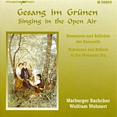 Singing in the Open Air (Romances and Ballads of the Romantic Era) by Wolfram Wehnert
