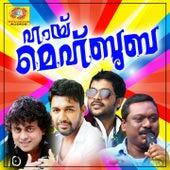 Hai Mehbooba de Various Artists