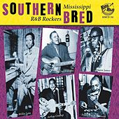 Southern Bred: Mississippi R&b Rockers Vol. 1 by Various Artists