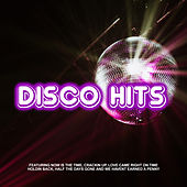 Disco Hits de Various Artists