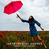 Instrumental Sounds: Ambient Relaxation di Relaxing Piano Music, Peaceful Piano, Instrumental
