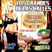 Los Grandes de las Calles de Various Artists