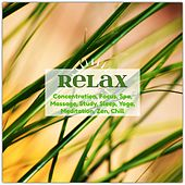 Relax: Concentration, Focus, Spa, Massage, Study, Sleep, Yoga, Meditation, Zen, Chill de Various Artists