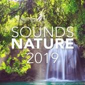 Sounds Of Nature 2019 - EP de Sounds Of Nature