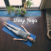 Sleep Yoga de Various Artists