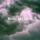Mindful Rain Sounds de Various Artists