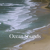 Ocean Sounds de Various Artists