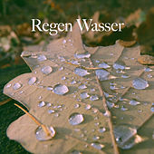 Regen Wasser by Various Artists