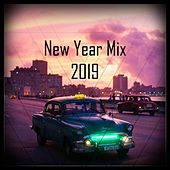 New Year Mix 2019 von Various Artists