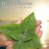Divina Natureza de Filhos do Sol - Ayná e Davy