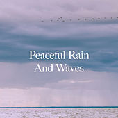 Peaceful Rain And Waves de Various Artists