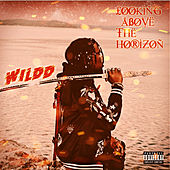 Looking Above the Horizon - EP von Wild D