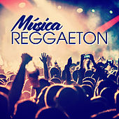 Musica Reggaeton von Various Artists
