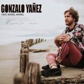 Viento Sur de Gonzalo Yañez