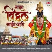 Majha Vitthal Majhi Vari de Various Artists