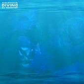 Sephia Diving by Dj tomsten