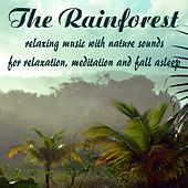 The Rainforest, relaxing music with nature sounds for relaxation, meditation and fall asleep by Nature Sounds (1)