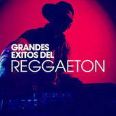 Grandes Exitos del Reggaeton von Various Artists
