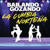 Bailando Y Gozando La Cumbia Norteña by Various Artists