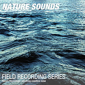 Nature Recordings - Soothing coastline noise by Nature Sounds (1)