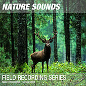 Nature Recordings - Spring forest by Nature Sounds (1)