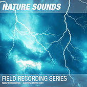 Nature Recordings - Soothing storm night de Nature Sounds (1)
