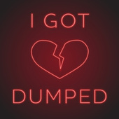 I Got Dumped�� de Various Artists