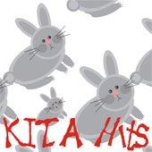 KITA Hits by Die Strolche