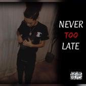 Never Too Late de C-Money