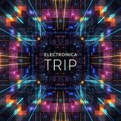 Electronica Trip de Various Artists