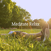 Meditate Relax by Various Artists