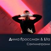 Сантиметрами de Дима Гроссман