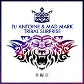 Tribal Surprise von DJ Antoine