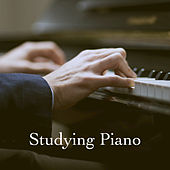 Studying Piano by Various Artists