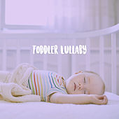 Toddler Lullaby by Various Artists