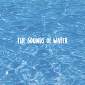 The Sounds Of Water by Various Artists