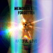 Hateful Love de Memories Long Forgotten