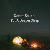 Nature Sounds For A Deeper Sleep by Various Artists