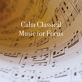Calm Classical Music for Focus by Various Artists