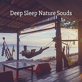 Deep Sleep Nature Souds de Various Artists