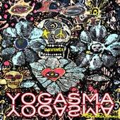 Yogasma von Davinci