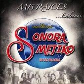 Mis Raíces, Evidencias von Sonora Mejiko