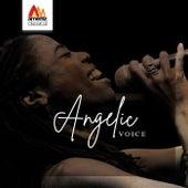 Angelic Voice de Various Artists