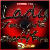 Lady You Are My Cherry Fire de DJ Dangerous Raj Desai