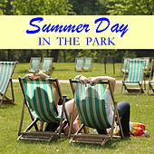 Summer Day In The Park de Various Artists