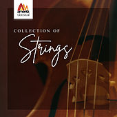 Collection of Strings von Various Artists