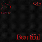 Beautiful, Vol.2 de Various