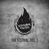 The Festival, Vol. 1 von Various