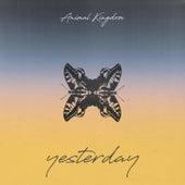 Yesterday by Animal Kingdom