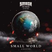 Small World by Angemi